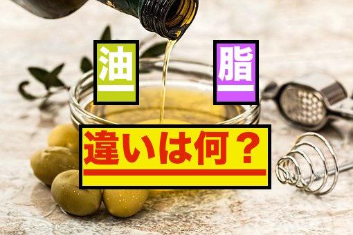 油と脂の違いについて