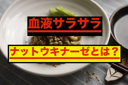 納豆に含まれるナットウキナーゼ